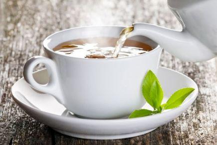 ÇAYKUR beyaz çay ile kansere çare arıyor