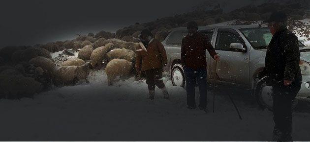 Hayrat'ta Kar Mücadelesi