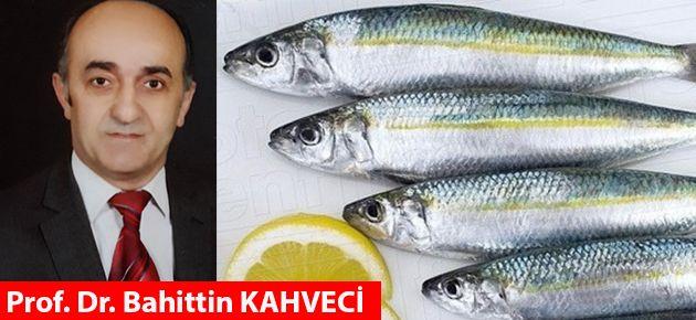İftar Yemeği ve Balık