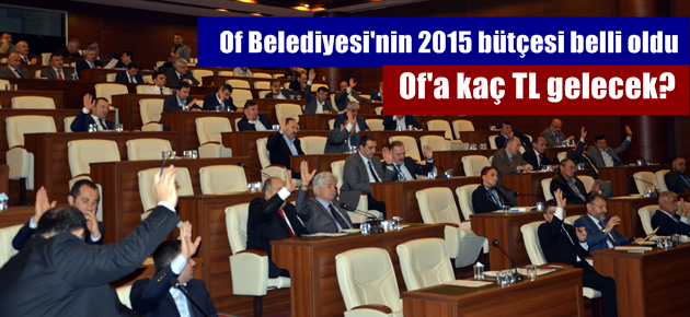 Of Belediyesi'nin 2015 bütçesi belli oldu