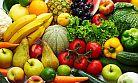 GİMDES Başkanı: Helal olmayan gıdalar toplum sağlığını tehdit ediyor