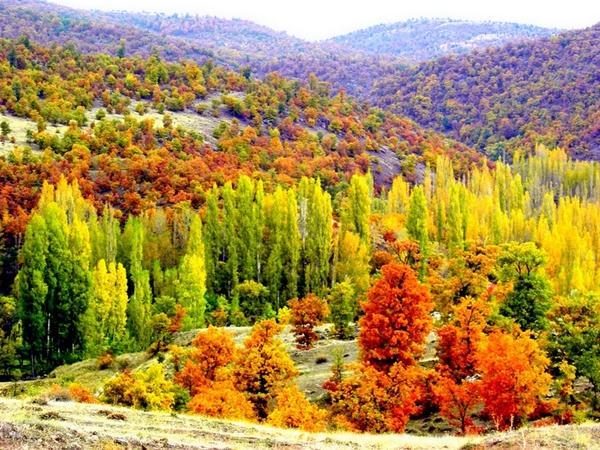 Karadeniz'den harika sonbahar manzaraları